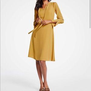 Ann Taylor Ruffle Sleeve Dress
